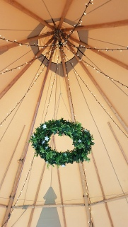 Canopy lighting and garland